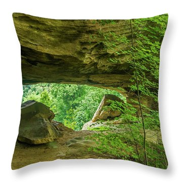White Branch Arch Throw Pillow by Ulrich Burkhalter