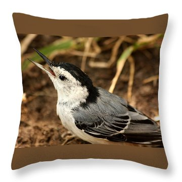White Breasted Nuthatch 2 Throw Pillow by Sheila Brown