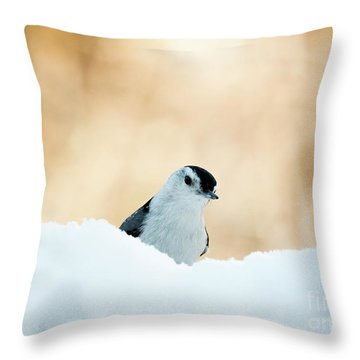 White Breasted Nuthatch In Snow Throw Pillow