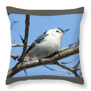 Throw Pillow featuring the photograph White-breasted Nuthatch Perched by Ricky L Jones
