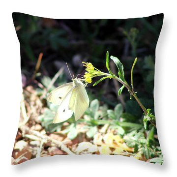 White Butterfly On Goldenseal Throw Pillow by Colleen Cornelius
