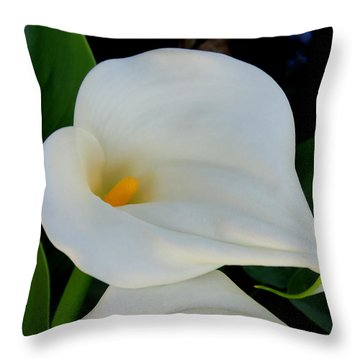 White Cala Lily Throw Pillow