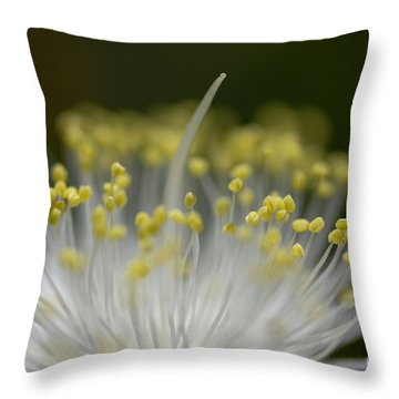 White Charm Throw Pillow by Catherine Lau