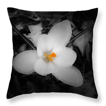 White Crocus - Edit Throw Pillow