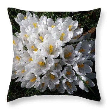 White Crocuses Throw Pillow