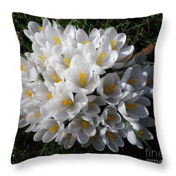 White Crocuses Throw Pillow