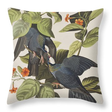 White Crowned Pigeon Throw Pillow by John James Audubon