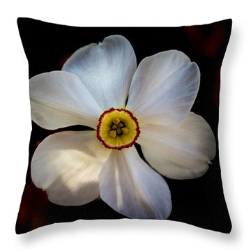 Throw Pillow featuring the photograph White Daffodil by Jay Stockhaus