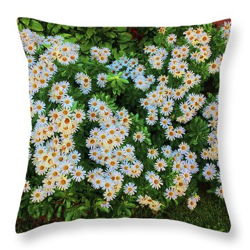 Throw Pillow featuring the photograph White Daisy Bush by Roger Bester