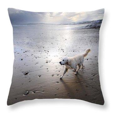 White Dog Throw Pillow by Svetlana Sewell