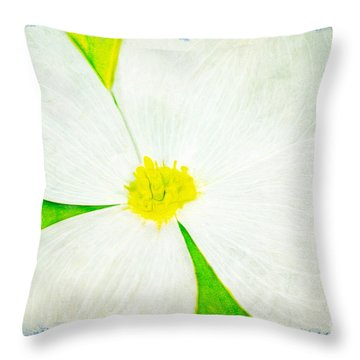White Dogwood Bloom Throw Pillow