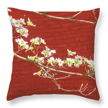 White Dogwood Brick Wall Throw Pillow