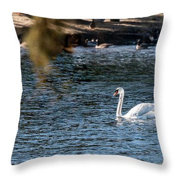 Throw Pillow featuring the photograph White Duck by Onyonet  Photo Studios
