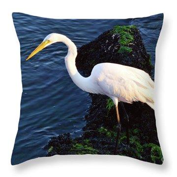 White Egret At Sunrise - Barnegat Bay Nj  Throw Pillow