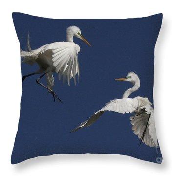White Egret Ballet Throw Pillow