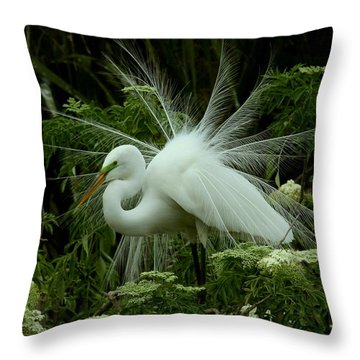 White Egret Displaying Throw Pillow