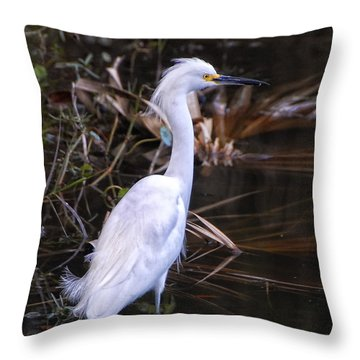 White Egret In Florida Pond Throw Pillow