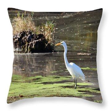 White Egret In The Shallows Throw Pillow