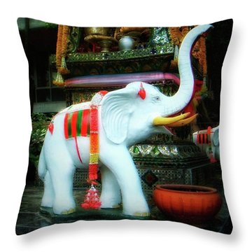 Throw Pillow featuring the photograph White Elephant. Meaning A Big Expensive by Mr Photojimsf