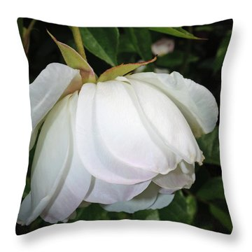 Throw Pillow featuring the photograph White Floral by Tikvah's Hope