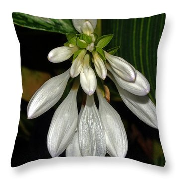 Throw Pillow featuring the photograph Hosta - Royal Standard  by George Bostian