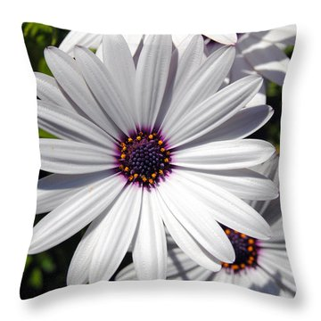 White Flower 1 Throw Pillow by Isam Awad