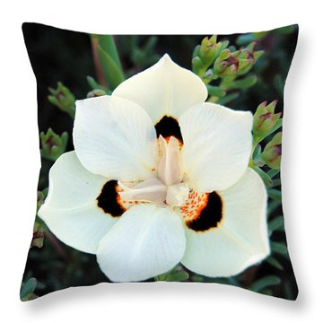 Peacock Flower Throw Pillow by Isam Awad
