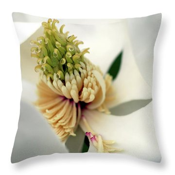 Throw Pillow featuring the photograph Magnolia Blossom by Meta Gatschenberger