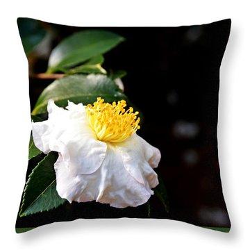 White Flower-so Silky And White Throw Pillow