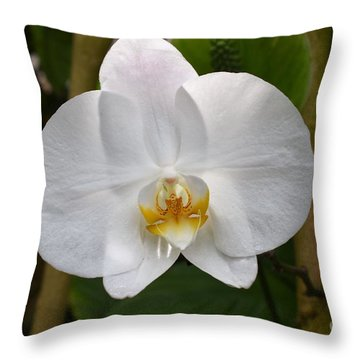 White Flower With Golden Accents Throw Pillow