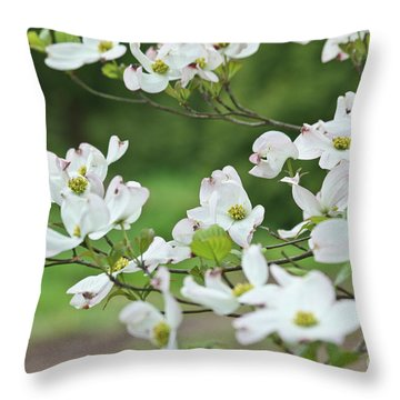 White Flowering Dogwood Throw Pillow by Ann Murphy