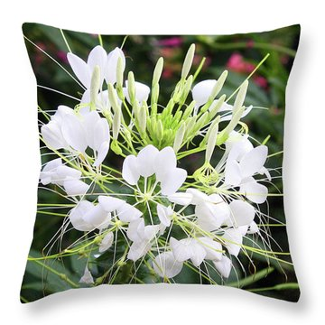 White Flowers Throw Pillow by Ellen Tully