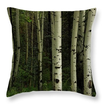 Throw Pillow featuring the photograph White Forest by James BO Insogna