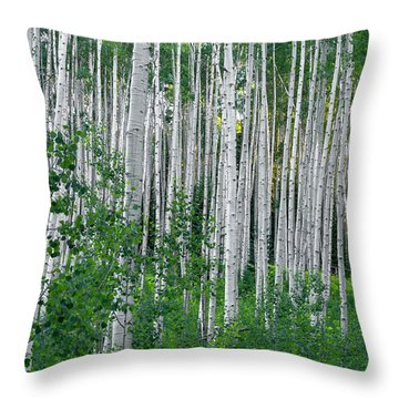 Throw Pillow featuring the photograph White Forest by Tim Reaves