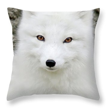 White Fox Throw Pillow