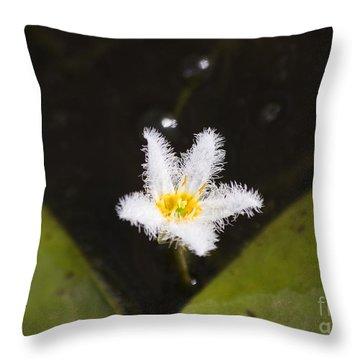 White Fringe Lily Throw Pillow
