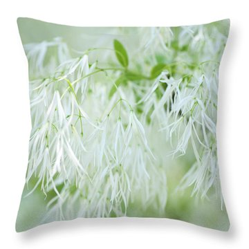 White Fringetree Throw Pillow