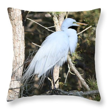 White Gold Throw Pillow