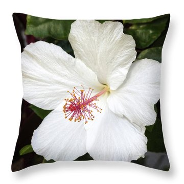 Throw Pillow featuring the photograph White Hibiscus Flower by Pierre Leclerc Photography