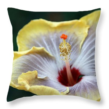 White Hibiscus Throw Pillow by Yvonne Wright