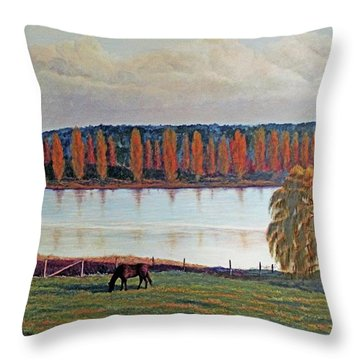 White Horse Black Horse Throw Pillow by Laurie Stewart