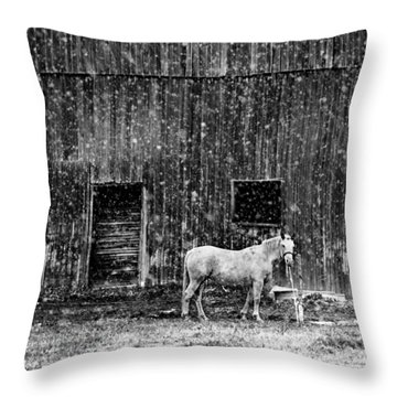 White Horse In A Snowstorm In Bw Throw Pillow