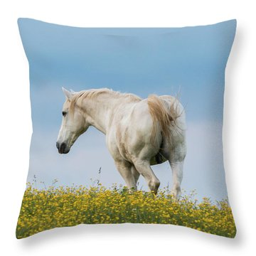White Horse Of Cataloochee Ranch - May 30 2017 Throw Pillow