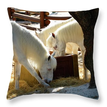 Throw Pillow featuring the photograph White Horses Feeding by David Lee Thompson