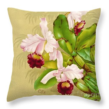 White House Orchid 1892 Throw Pillow by Padre Art