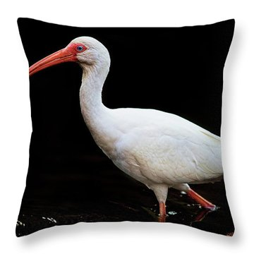 White Ibis Dripping Throw Pillow