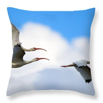 White Ibis Flock Throw Pillow