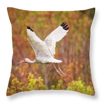 White Ibis In Hilton Head Island Throw Pillow