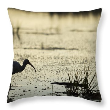 White Ibis Morning Hunt Throw Pillow