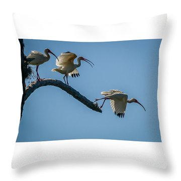 White Ibis Takeoff Throw Pillow